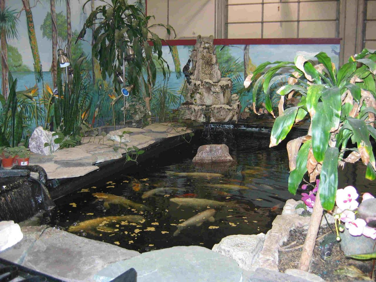 How to design a koi fish pond fish pond design for Indoor koi fish pond